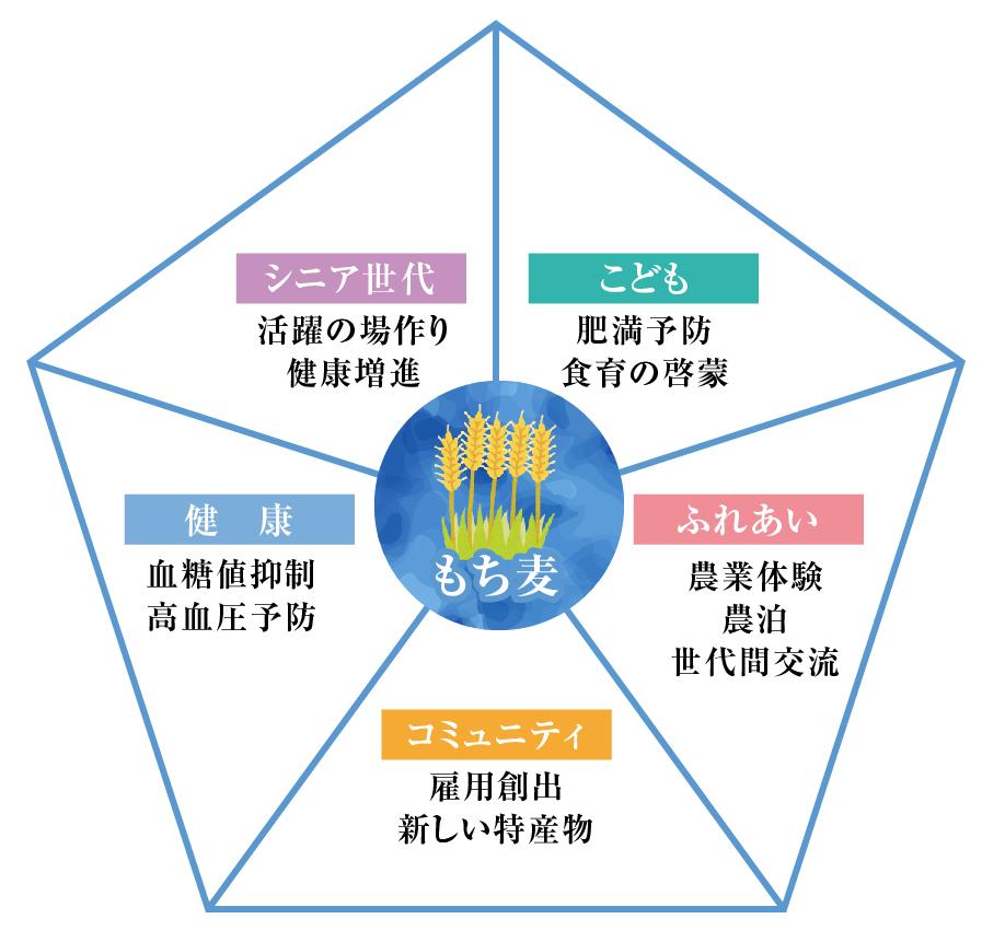もち麦循環型イメージ